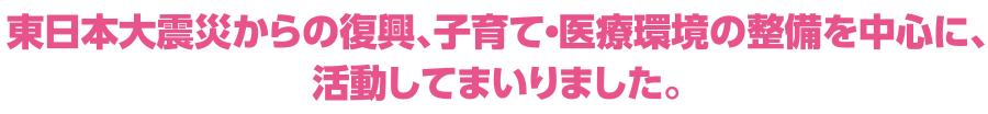 東日本大震災からの復興、子育て・医療環境の整備を中心に、活動してまいりました。